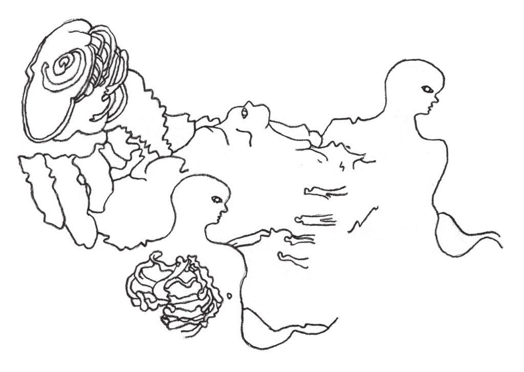 lachaud disegno